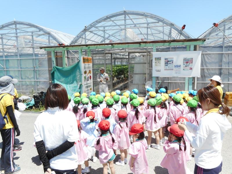 f:id:sakaikita:20170519104245j:image:left:w120,h90