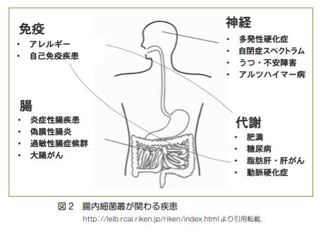 f:id:sakainohito:20190117230835p:plain