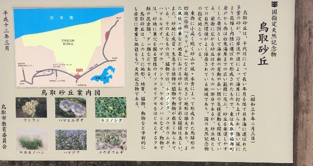 f:id:sakamoto895485:20170327112517p:plain