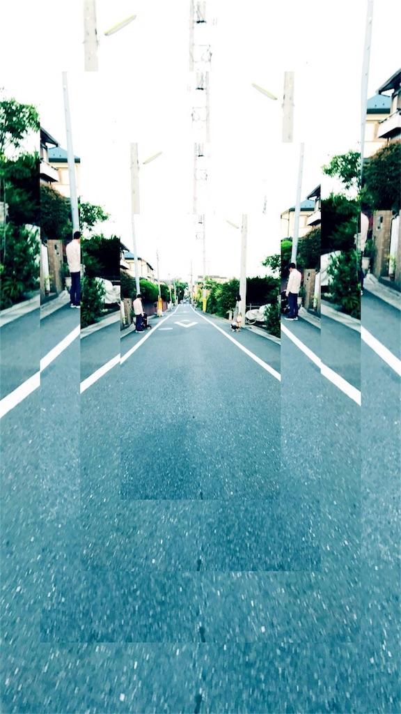 f:id:sakana714:20170531110748j:image
