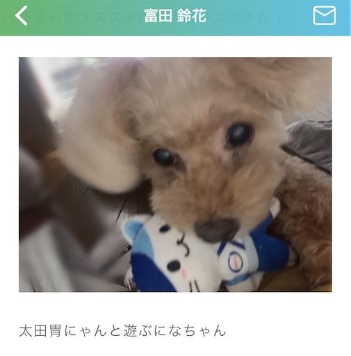 f:id:sakasakaryoryo:20200215212916j:image