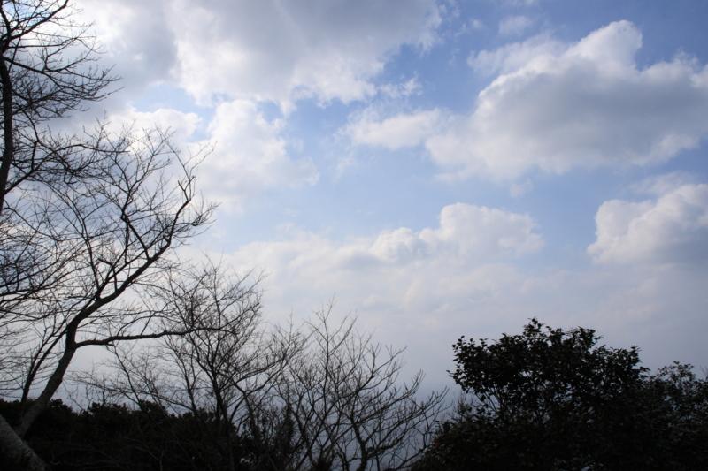f:id:sakasakingyo1958:20140122125258j:image:w640