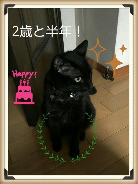 f:id:sakasuke:20160918221815j:image