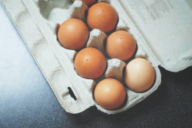 【論文読解】ビタミン様物質コリンの重要性【小胞体ストレスなど】