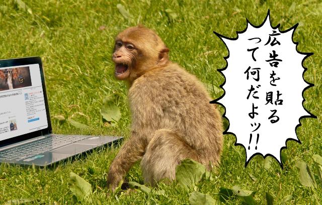 f:id:sakatsu_kana:20161011204631j:plain