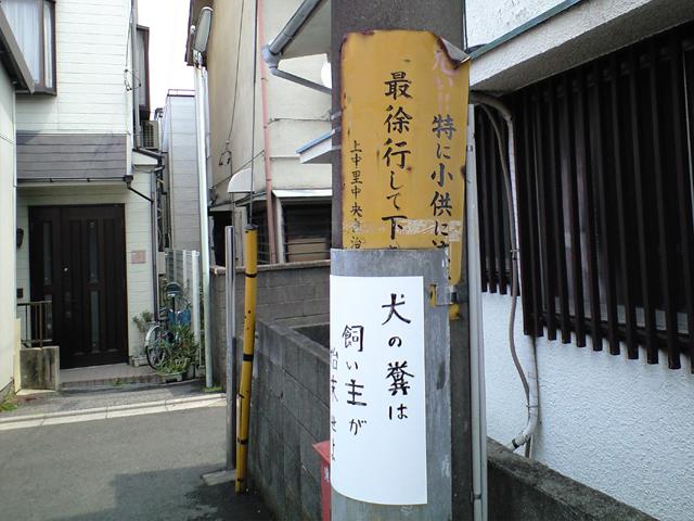 f:id:sakatsu_kana:20170117203345j:plain