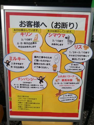 f:id:sakatsu_kana:20170213201517j:plain