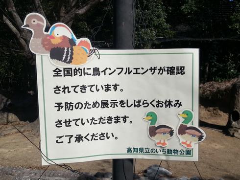 f:id:sakatsu_kana:20170213201909j:plain