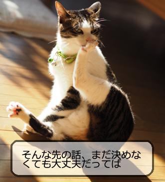 f:id:sakatsu_kana:20170405191551j:plain