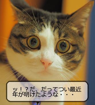 f:id:sakatsu_kana:20170405191608j:plain