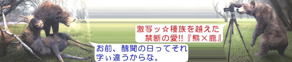 f:id:sakatsu_kana:20170914133242j:plain