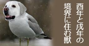f:id:sakatsu_kana:20180723183114j:plain