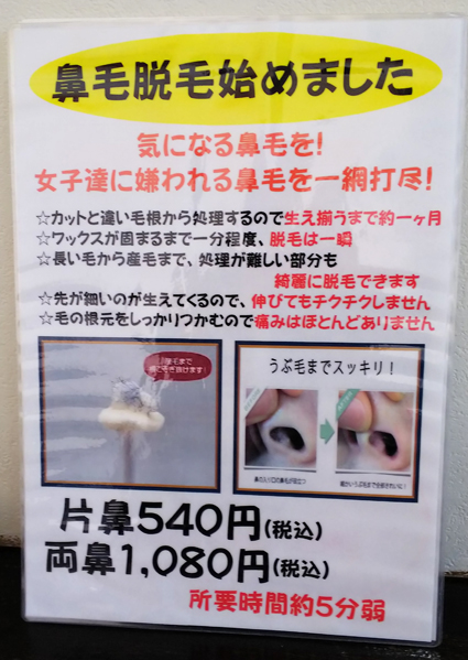 f:id:sakatsu_kana:20181112073154j:plain