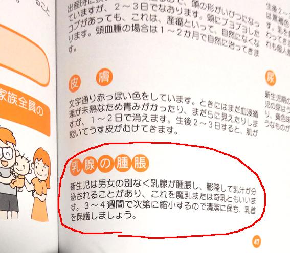 f:id:sakatsu_kana:20181116163837j:plain