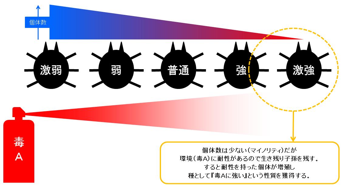 f:id:sakatsu_kana:20190918103159p:plain