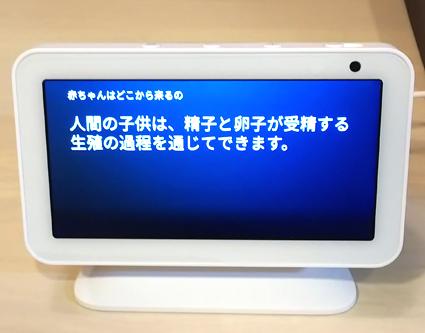 f:id:sakatsu_kana:20191217093749j:plain