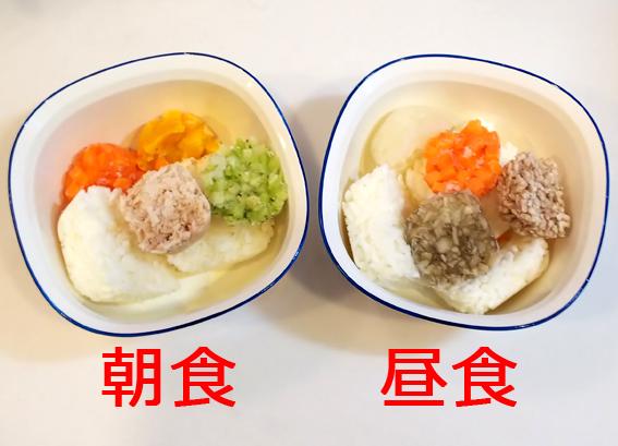 f:id:sakatsu_kana:20200205091837j:plain