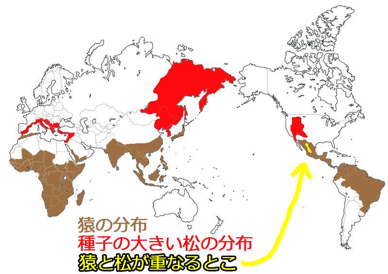 f:id:sakatsu_kana:20210319113626j:plain