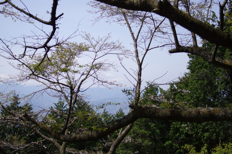 f:id:sakemaro:20150422210245j:plain