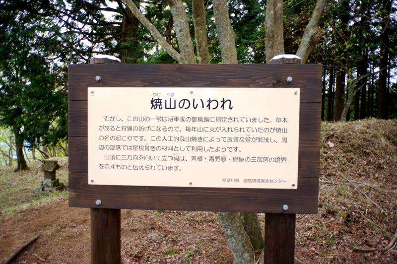 f:id:sakemaro:20150508100557j:plain
