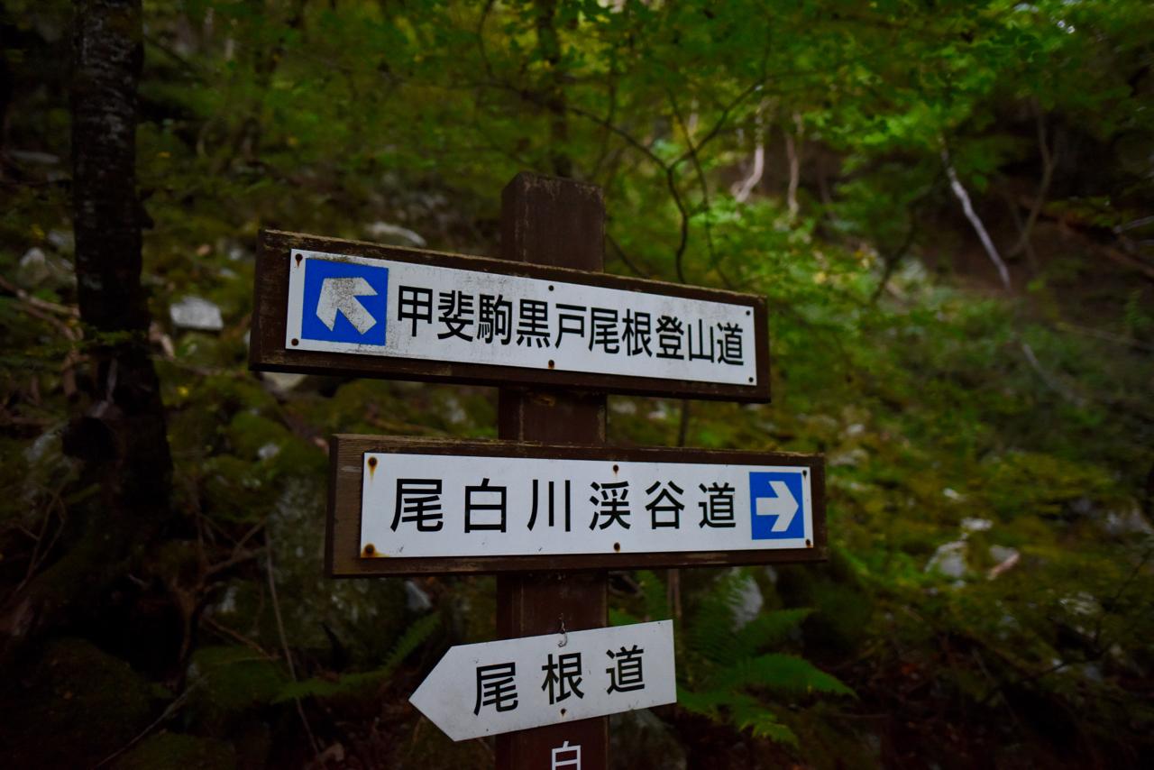 f:id:sakemaro:20151120011353j:plain