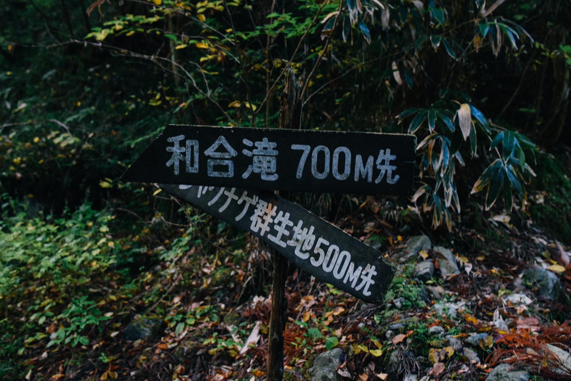 f:id:sakemaro:20151202234308j:plain