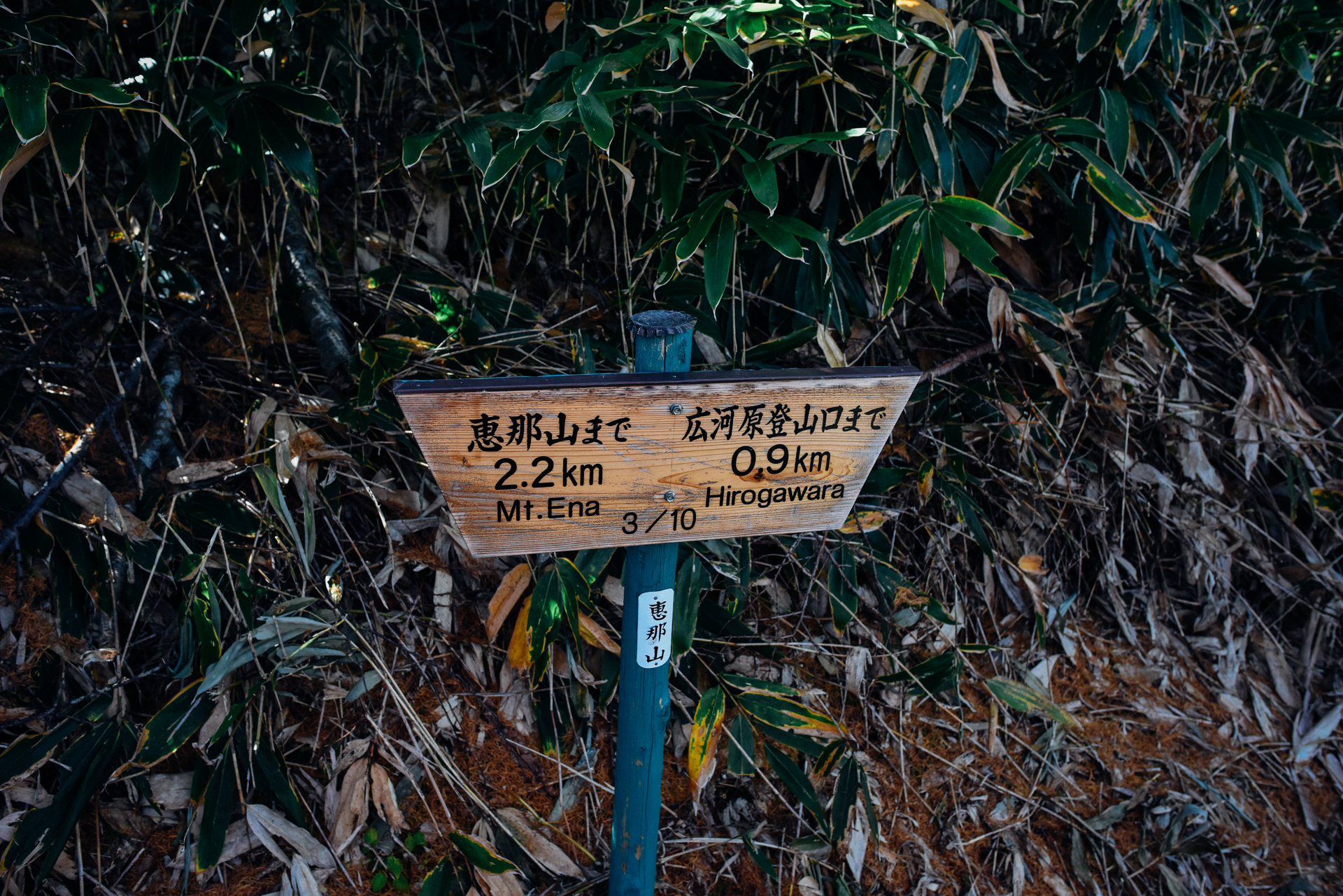 f:id:sakemaro:20151206020138j:plain