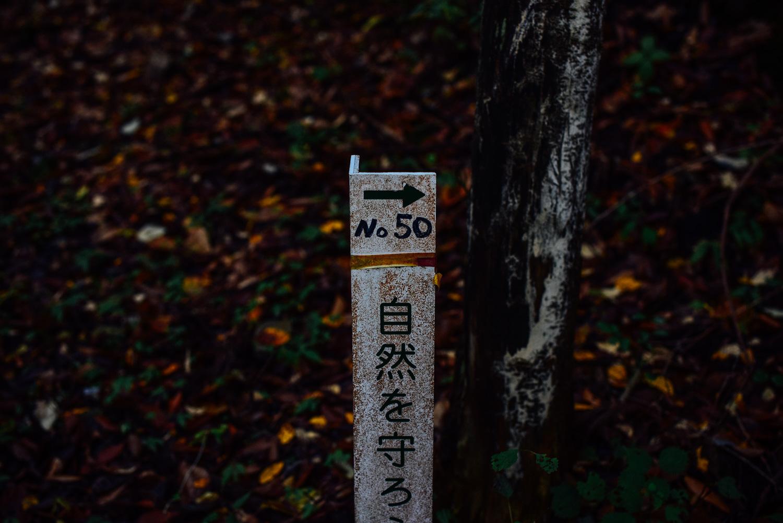 f:id:sakemaro:20160105000637j:plain