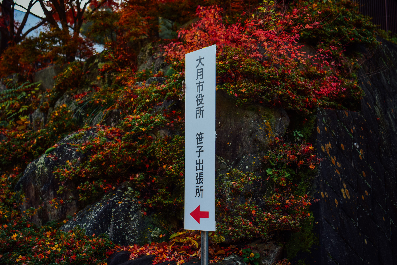 f:id:sakemaro:20160105000643j:plain