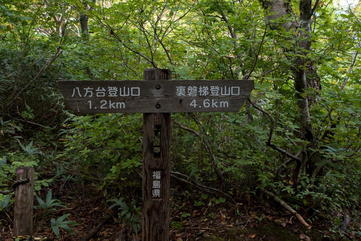 f:id:sakemaro:20161023213753j:plain