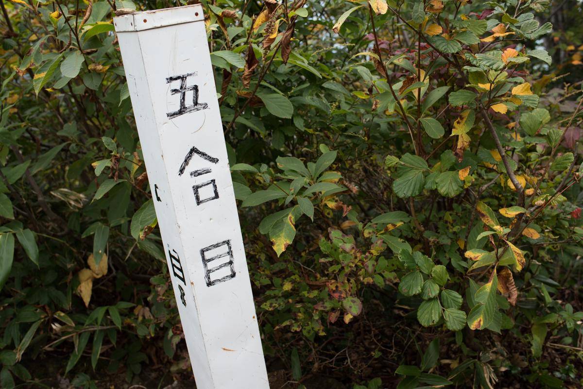 f:id:sakemaro:20161024083743j:plain