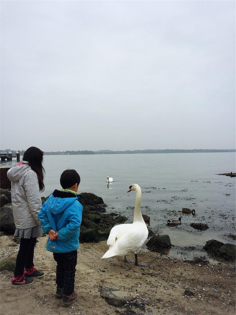 f:id:saki-bianca:20180325235523j:image
