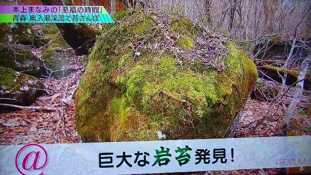 f:id:saki_mass13:20170619191235j:image