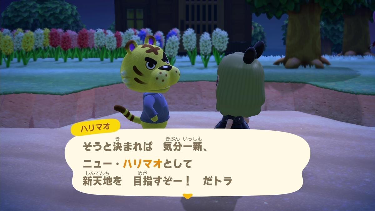 f:id:saki_yukino:20200522222823j:plain