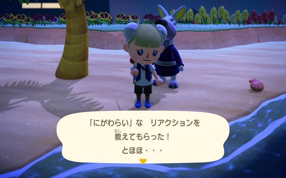 f:id:saki_yukino:20200608223336j:plain