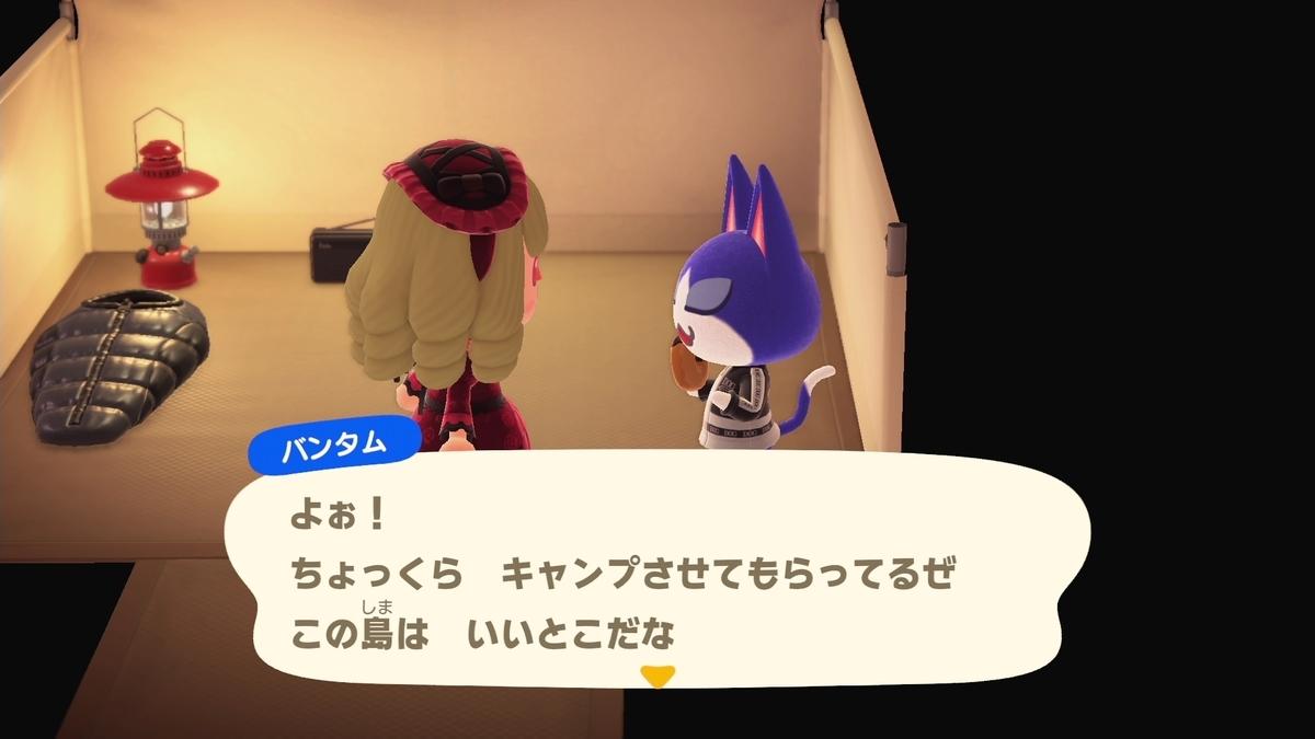 f:id:saki_yukino:20201019160822j:plain