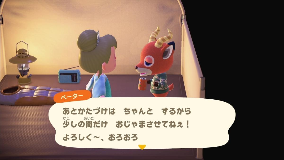 f:id:saki_yukino:20210210211644j:plain