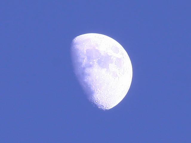 個別「[月][空]昼間の月」の写真、画像 - 逢いたい日記の写真館