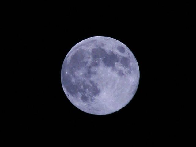 月影のパラノイア