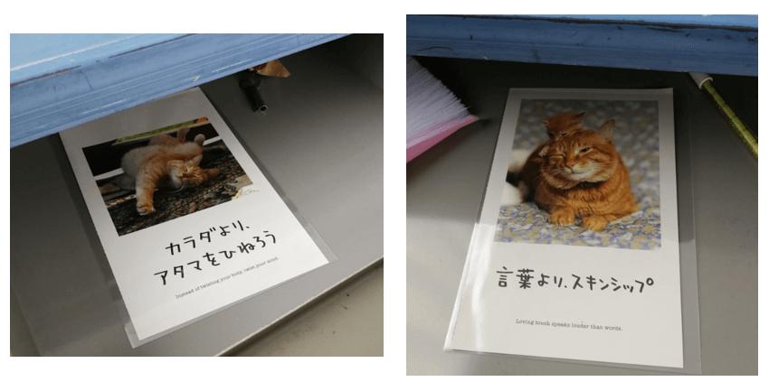 f:id:sakiimamura:20200617131726p:plain
