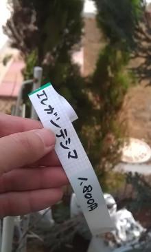 内装ホイールの出張修理☆埼玉の佐藤企画-エレガンテシマ