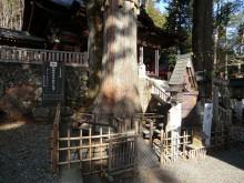 内装ホイールの出張修理☆埼玉の佐藤企画-三峯神社