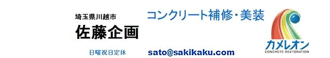 f:id:sakikaku2009:20190509215554j:plain