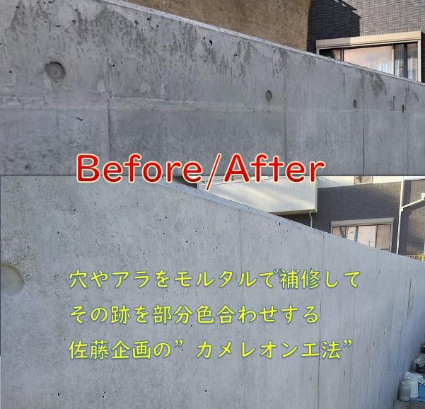 f:id:sakikaku2009:20200329214200j:plain