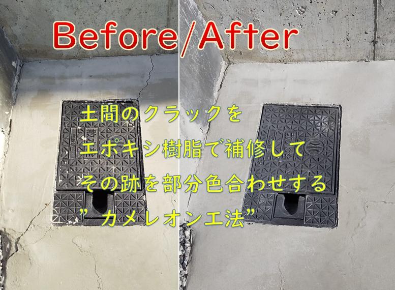 f:id:sakikaku2009:20210105214836j:plain