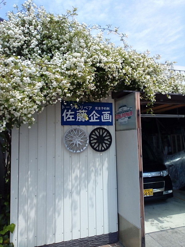 f:id:sakikaku2009:20210429211445j:plain