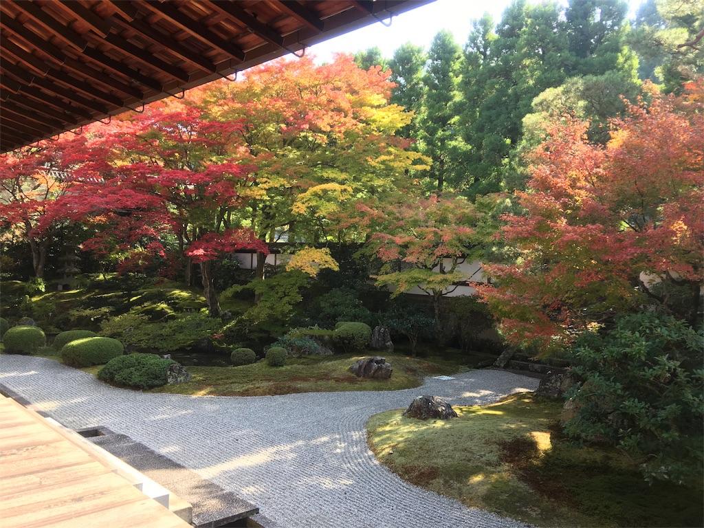 f:id:sakiko2002:20161113211239j:image