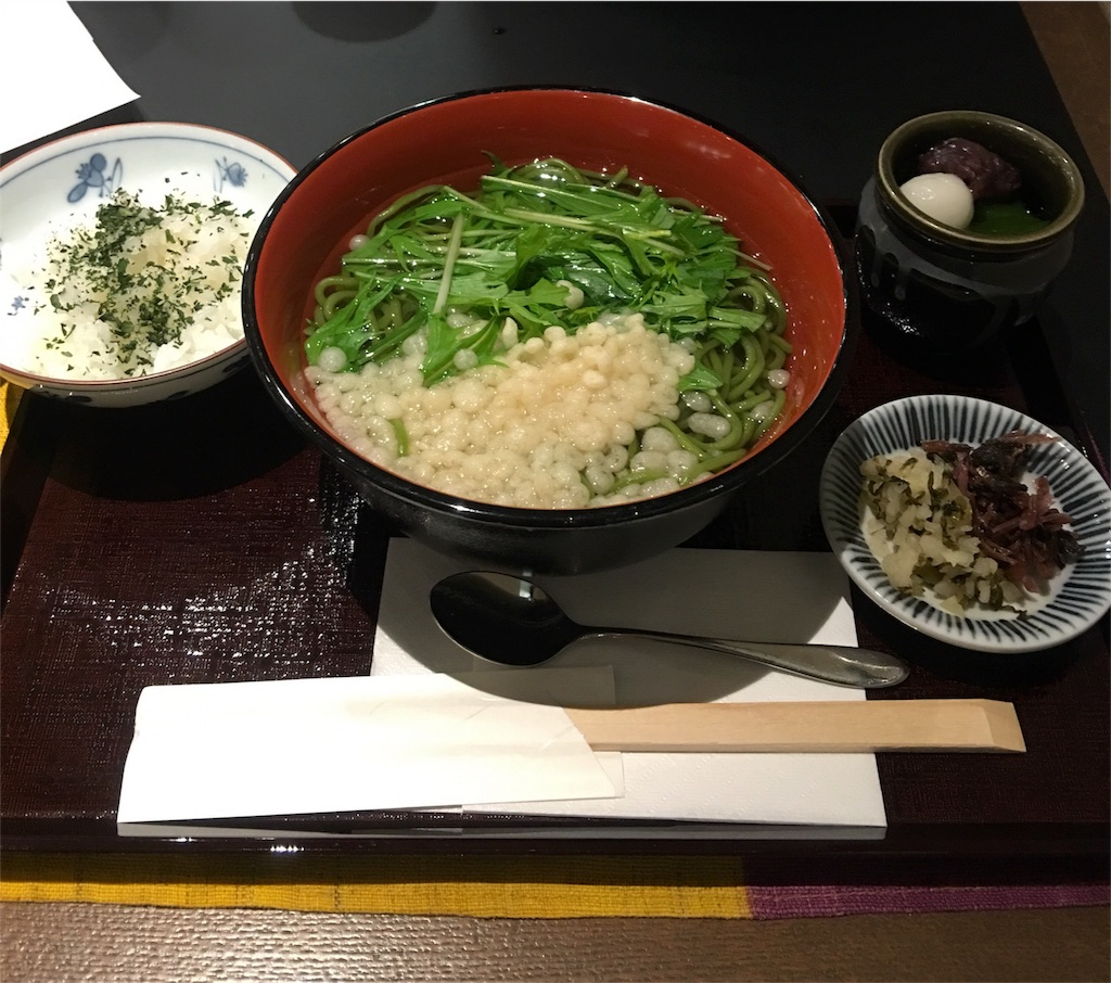 f:id:sakiko2002:20161113211713j:image