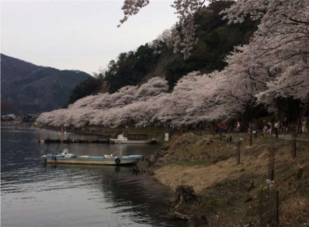 f:id:sakiko2002:20191027235424j:image