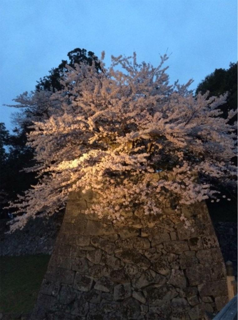 f:id:sakiko2002:20191027235450j:image